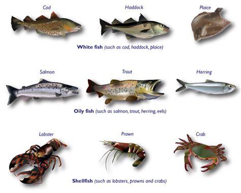 types  white fish  eat
