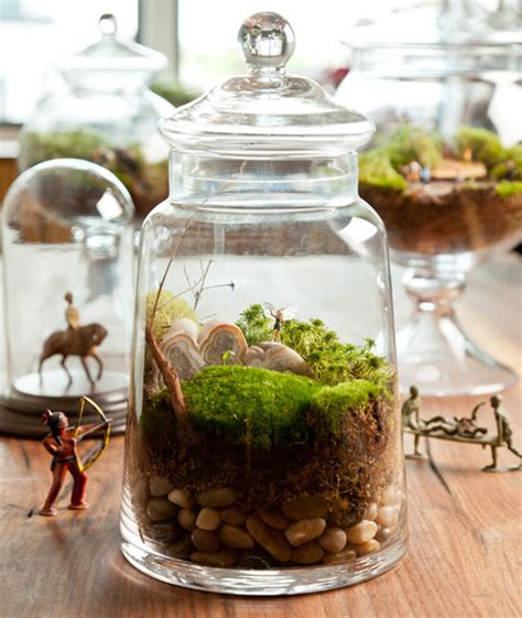 terrarium how to how to make a terrarium take a look at these 7 adorable ideas better housekeeper