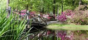 Experience Summer Wood In Summerville, SC Sabal Homes
