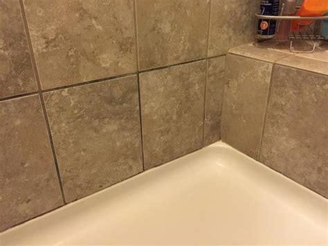 Please Help: Dark grout in master bath shower (pics