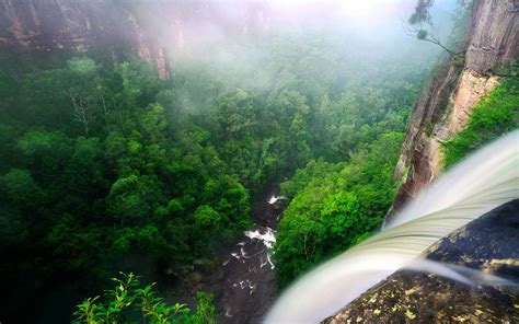 rainforest wallpapers hd  desktop backgrounds