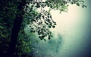 Beautiful Rain Wallpapers For Your Desktop - Creatives Wall