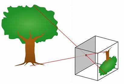 Pinhole Camera Wikipedia Svg Wiki