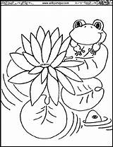 Lily Coloring Water Pages Monet Printable Pad Flowers Claude Pads Lilies Flower Drawing Outline Clipart Coloringpages101 Waterlily Getcolorings Getdrawings Library sketch template