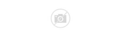 Israel Biblical Study Institute Program Lewis Abraham