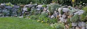Die Schönsten Steingärten : die 10 sch nsten pflanzen f r trockenmauer und co garten ~ Bigdaddyawards.com Haus und Dekorationen