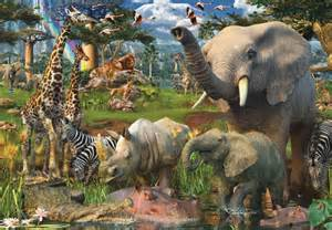 Wild Jungle Animals