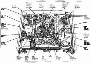Ford 7 3 Engine Diagram 6 9  7 3 Idi Diesel Tech Info