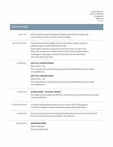 Professional resume template resume cv for Resumae template