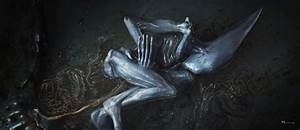 deacon_alien_prometheus | tuhinternational.