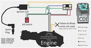 Ignition Kill Switch Wiring