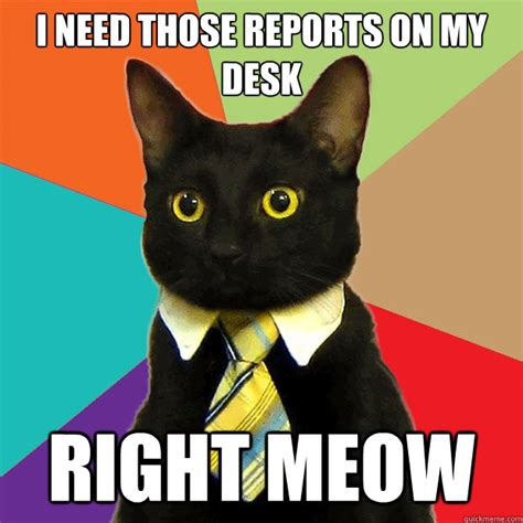Meow Meme - i need those reports on my desk right meow business cat quickmeme