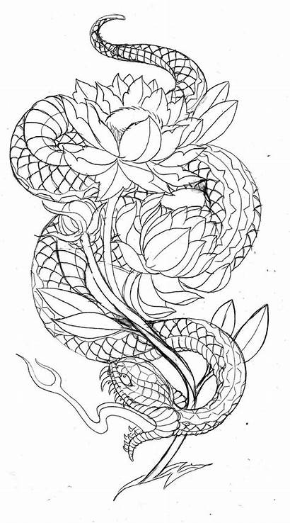 Dragon Tattoo Japanese Snake Outline Chinese Tattoos