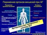 Питание при гипертонии и сердечной недостаточности
