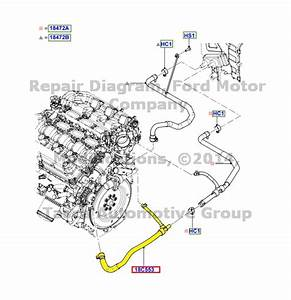 2002 Ford Escape Coolant Hose Diagram