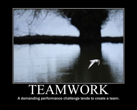 quotes  teamwork  performance quotesgram