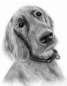 Free Dogs Drawings, Download Free Clip Art, Free Clip Art ...