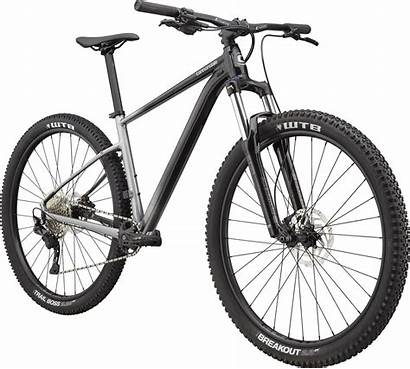 Cannondale 2021 Trail Hardtail Grey Se Mountain