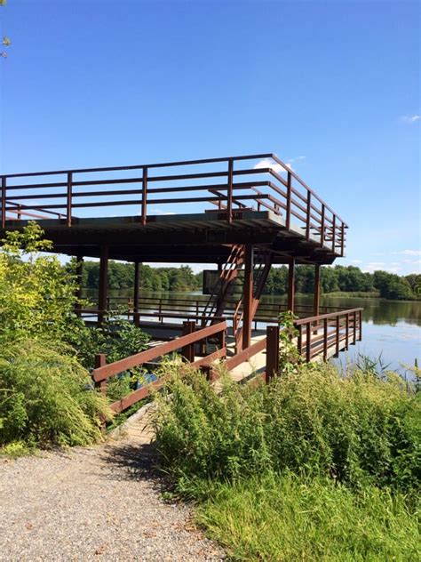 River Deck In Philly by Heinz National Wildlife Refuge At Tinicum 57 Photos