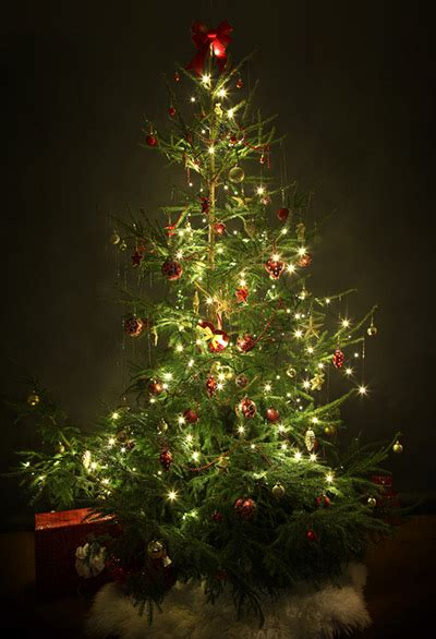 basics  decorating  christmas tree