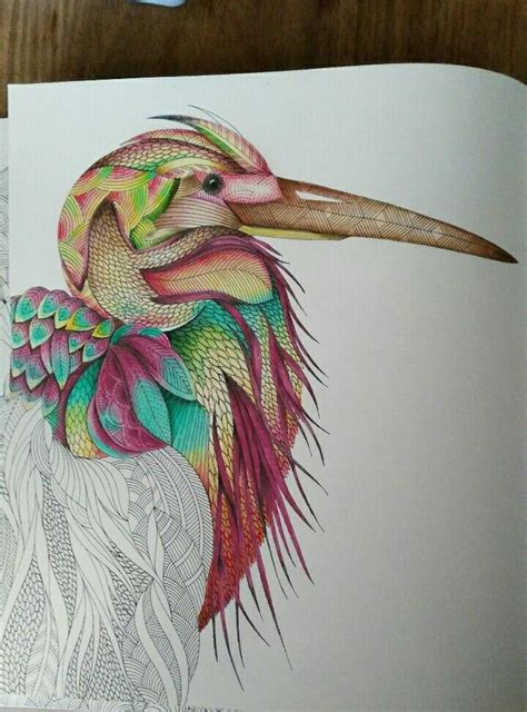 millie marotta tropical world coloring book love
