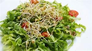 receta de ensalada de germinados karlos arguinano With ensalada de atun vegano con germinados
