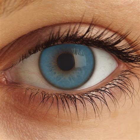 free standing kitchen island with seating blue colored contact lenses 28 images awesome blue