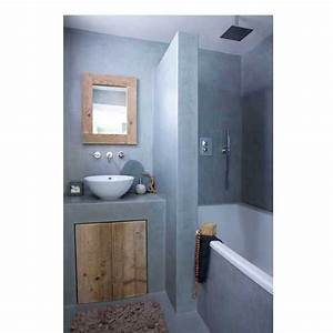 Plan Petite Salle De Bain : petite salle de bain plan vasque en b ton gris ~ Melissatoandfro.com Idées de Décoration