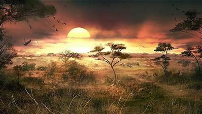 African Sunset Cool Africa Wallpapers Nature Landscapes