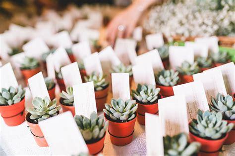 succulent wedding favours singaporebrides