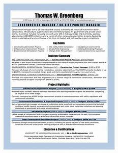 Cv Covering Letters Examples 11 Sample Resume For Project Manager Construction Riez