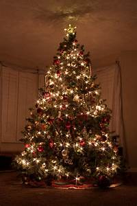 Free photo: Christmas Tree, Christmas Lights - Free Image