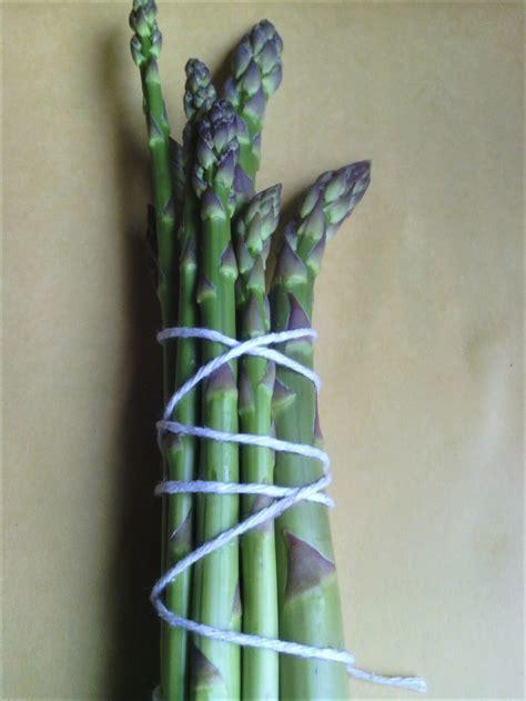 cuisiner asperge cuisiner l asperge cuisiner avec micheline