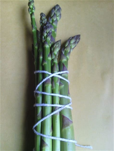 cuisiner l asperge cuisiner l asperge cuisiner avec micheline