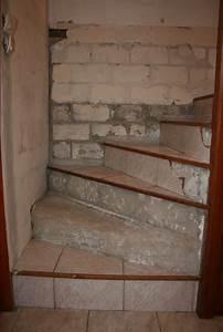 Carreler Des Marches D Escalier Exterieur : carreler un escalier en b ton brut ~ Melissatoandfro.com Idées de Décoration