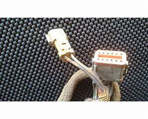 Caterpillar C12 Wiring Harness For Sale