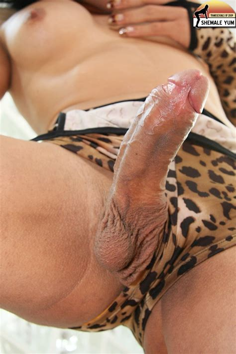 Close Up Shemale Cock In Panties Compilation Photo 50
