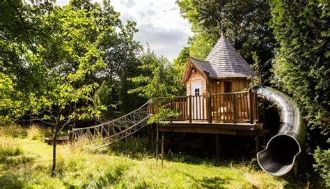 in style lighting blue forest s fairytale treehouse complete with its own slide