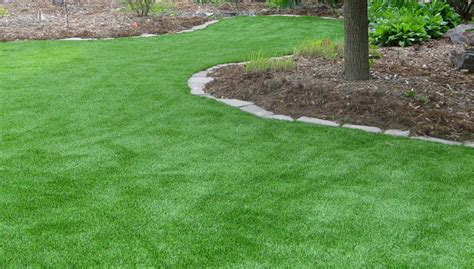 5 Lush Alternatives To A Grass Lawn