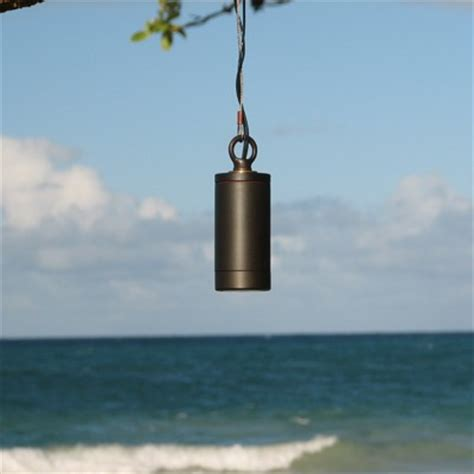 tree lights and hanging outdoor fixtures