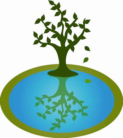 Pond Clipart Clip Water Reflection Tree Reflections