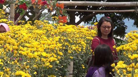 tempat wisata taman bunga  bandungan kab semarang youtube