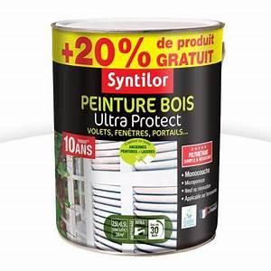 Peinture Bois Intext Ultra Protect Coloris Blanc 25L