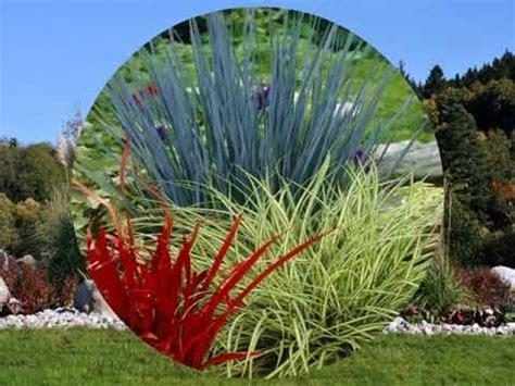 Gräser Im Garten Youtube