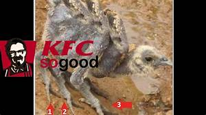 KFC Spider Chickens? Suing 3 Companies Over 8-Legged ...