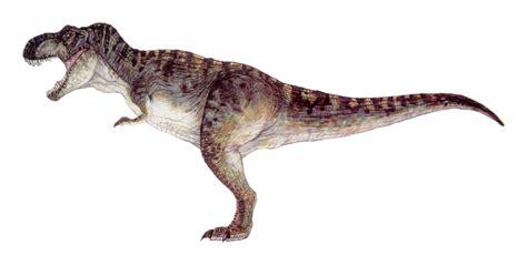 The Lost World Jurassic Park Male Trex Drawing Jurassic