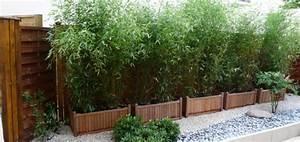 Bac Rectangulaire Pour Bambou : planter des bambous dans un bac pivoine etc ~ Nature-et-papiers.com Idées de Décoration