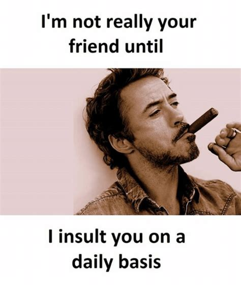 Meme Insults - i m not really your friend until i insult you on a daily basis insulting meme on sizzle
