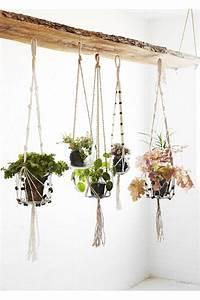 Pot A Accrocher : pot en verre suspendu sur corde accrocher au plafond ou sur un portant d 16x69 cm botanical ~ Teatrodelosmanantiales.com Idées de Décoration