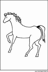 Kostenlose, Malvorlage, Von, Einem, Pferd, Und, Window, Color